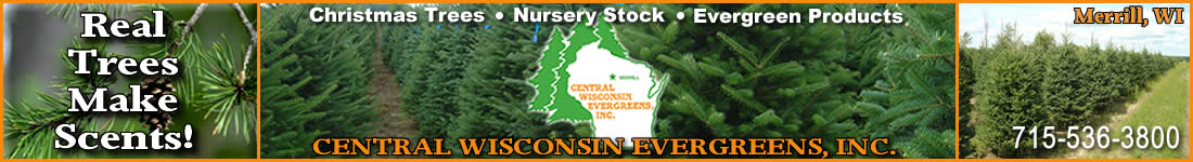 Christmas Trees/Nursery Stock/Evergreen Products Central Wisconsin Evergreens
